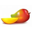 FORLIVE Mango disidratato