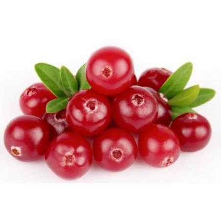 FORLIVE Bacche di Cranberry (mirtillo rosso) Bio