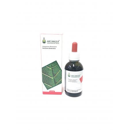 ARCANGEA ZENZERO Soluzione Idroalcolica Bio