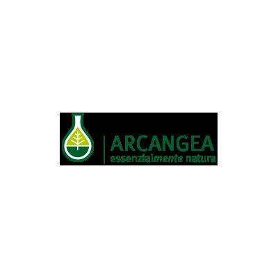 Manufacturer - Arcangea